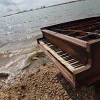 Mysterious+Piano+Appears+Middle+Biscayne+Bay+nSK9lcZD7IEl-200x200